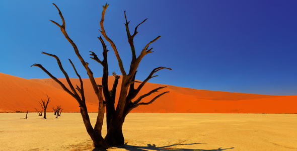 africa-for-web-iStock_000022894430XXLarge