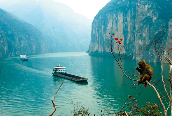 Asia River Cruise The Yangtze Cruise International