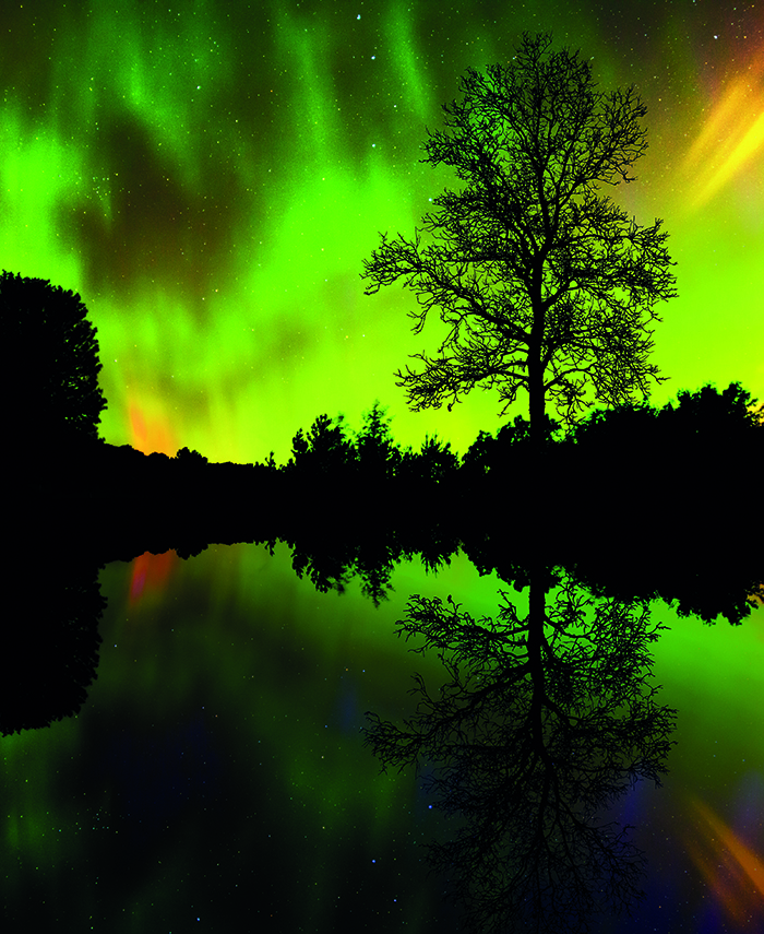 Seek out the Northern Lights on a cruise © iStock