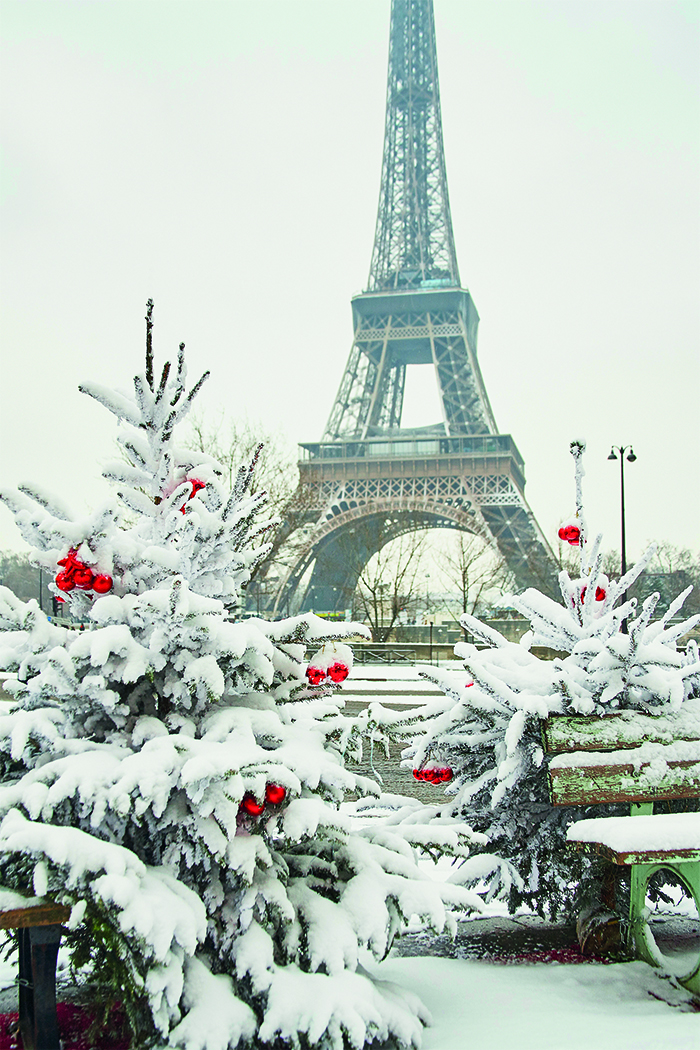 Paris in winter © iStock