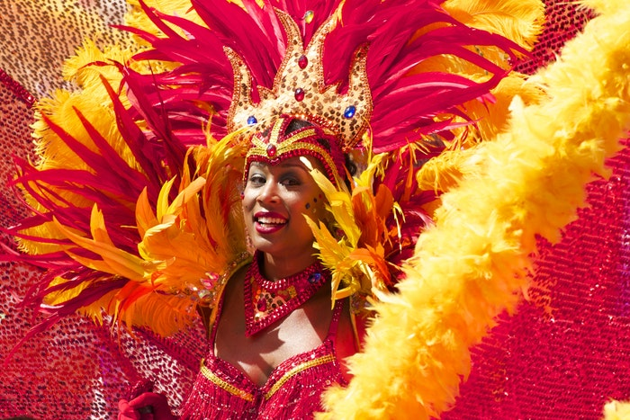 A woman in costume during carnival in Rio de Janeiro, Brazil