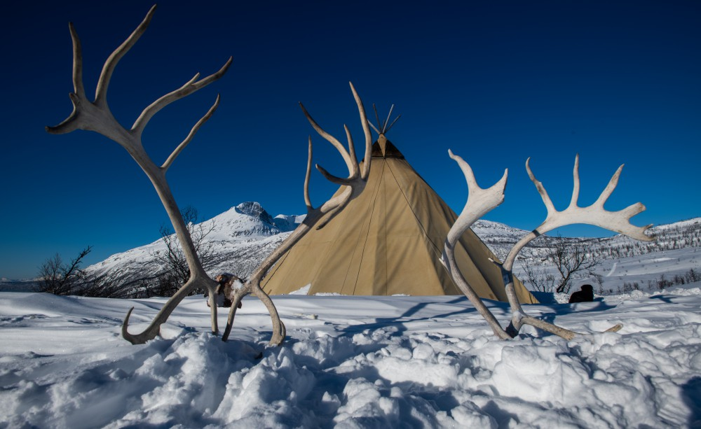 Sami reindeer herder tent in the snow on a Viking Northern Lights cruise