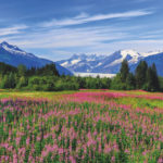 Juneau-Alaska-visited-on-a-USA-stay-and-cruise