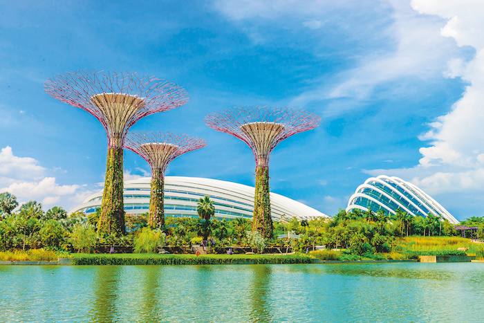 things-to-do-in-singapore-garden